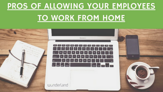 PROS OF WORKING FROM HOME | WunderLand Group